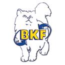 BKF Schule GmbH Michael Wiesemes in Aschersleben