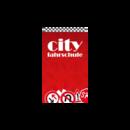 City-Fahrschule in Hilter - Borgloh